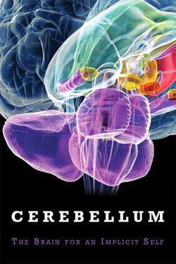 The Cerebellum: Brain for an Implicit Self