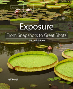 Exposure: From Snapshots to Great Shots, Second Edition