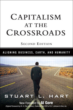 Capitalism at the Crossroads: Aligning Business, Earth, and Humanity, Second Edition