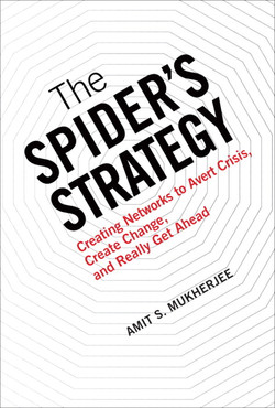 The Spider's Strategy: Creating Networks to Avert Crisis, Create Change and Really Get Ahead