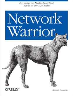 Network Warrior, 1st Edition