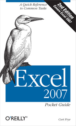 Excel 2007 Pocket Guide, 2nd Edition