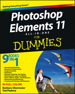 Photoshop Elements 11 All-in-One For Dummies