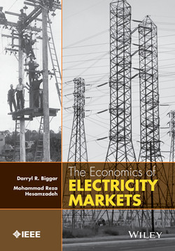The Economics of Electricity Markets