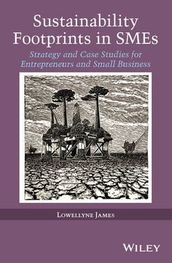 Sustainability Footprints in SMEs: Strategy and Case Studies for Entrepreneurs and Small Business