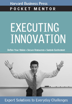 Executing Innovation: Expert Solutions to Everyday Challenges