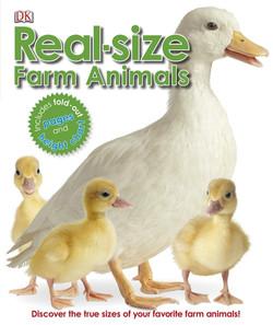 Real-size Farm Animals