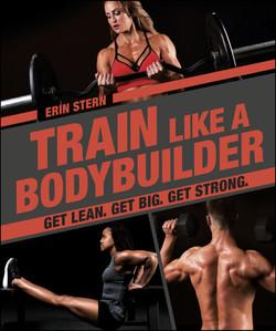 Train Like a Bodybuilder