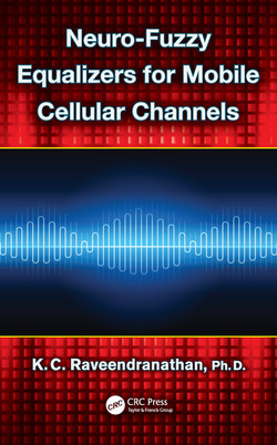 Neuro-Fuzzy Equalizers for Mobile Cellular Channels