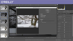 Adobe Camera Raw Workflow