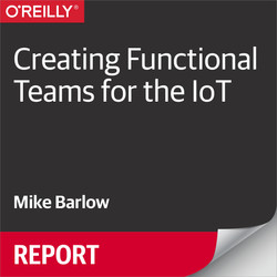 Creating Functional Teams for the IoT