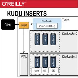 Introducing Kudu and Kudu Architecture
