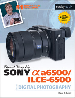 David Busch's Sony Alpha a6500/ILCE-6500 Guide to Digital Photography, 1st Edition