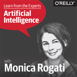 Learn from the Experts about AI: Monica Rogati