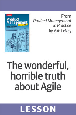 The wonderful, horrible truth about Agile