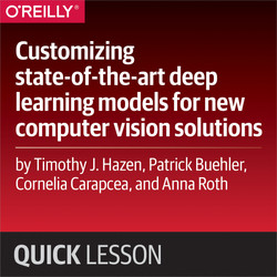 Customizing state-of-the-art deep learning models for new computer vision solutions