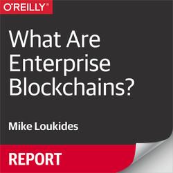 What Are Enterprise Blockchains?