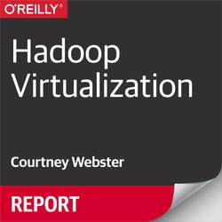Hadoop Virtualization