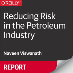 Reducing Risk in the Petroleum Industry