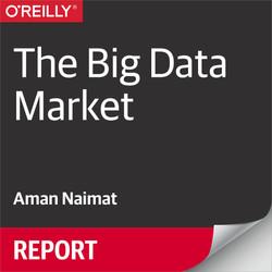 The Big Data Market