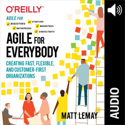 Agile for Everybody (Audio Book)