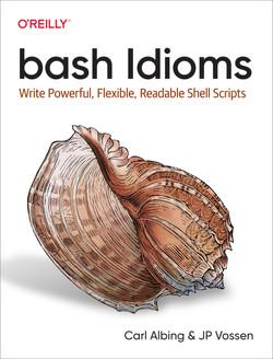 bash Idioms