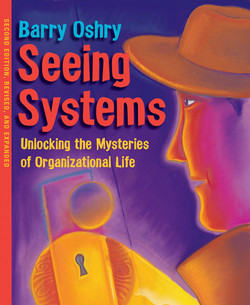 Seeing Systems, 2nd Edition