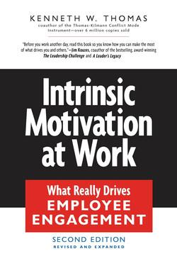Intrinsic Motivation at Work, 2nd Edition