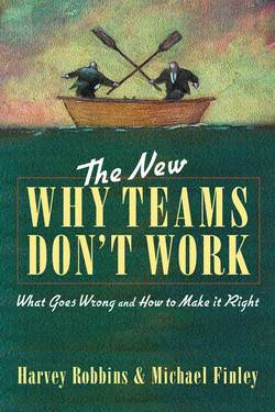 The New Why Teams Don't Work