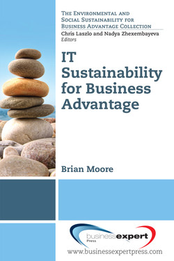IT Sustainability for Business Advantage