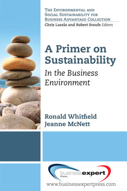 A Primer on Sustainability