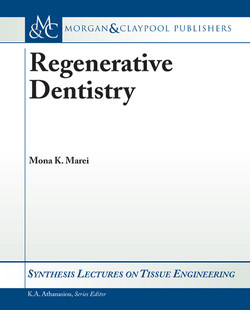 Regenerative Dentistry