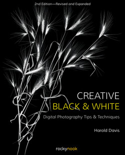 Creative Black and White, 2nd Edition