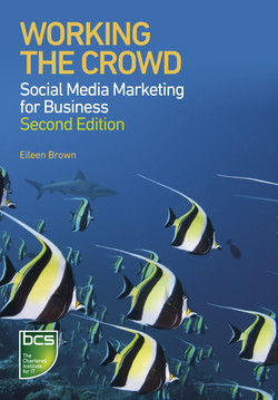 Working the Crowd - Social media marketing for business Second edition