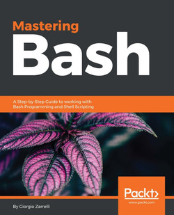 Mastering Bash