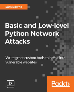 Basic and Low-level Python Network Attacks