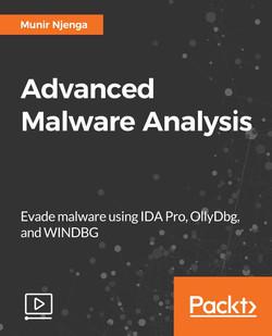 Advanced Malware Analysis