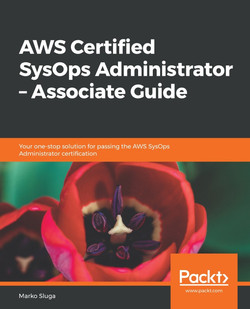 AWS Certified SysOps Administrator - Associate Guide