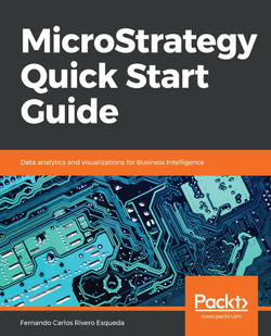 MicroStrategy Quick Start Guide