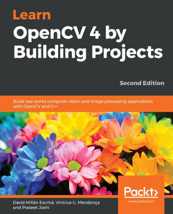 Learn OpenCV 4 by Building Projects - Second Edition