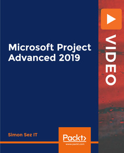 Microsoft Project Advanced 2019
